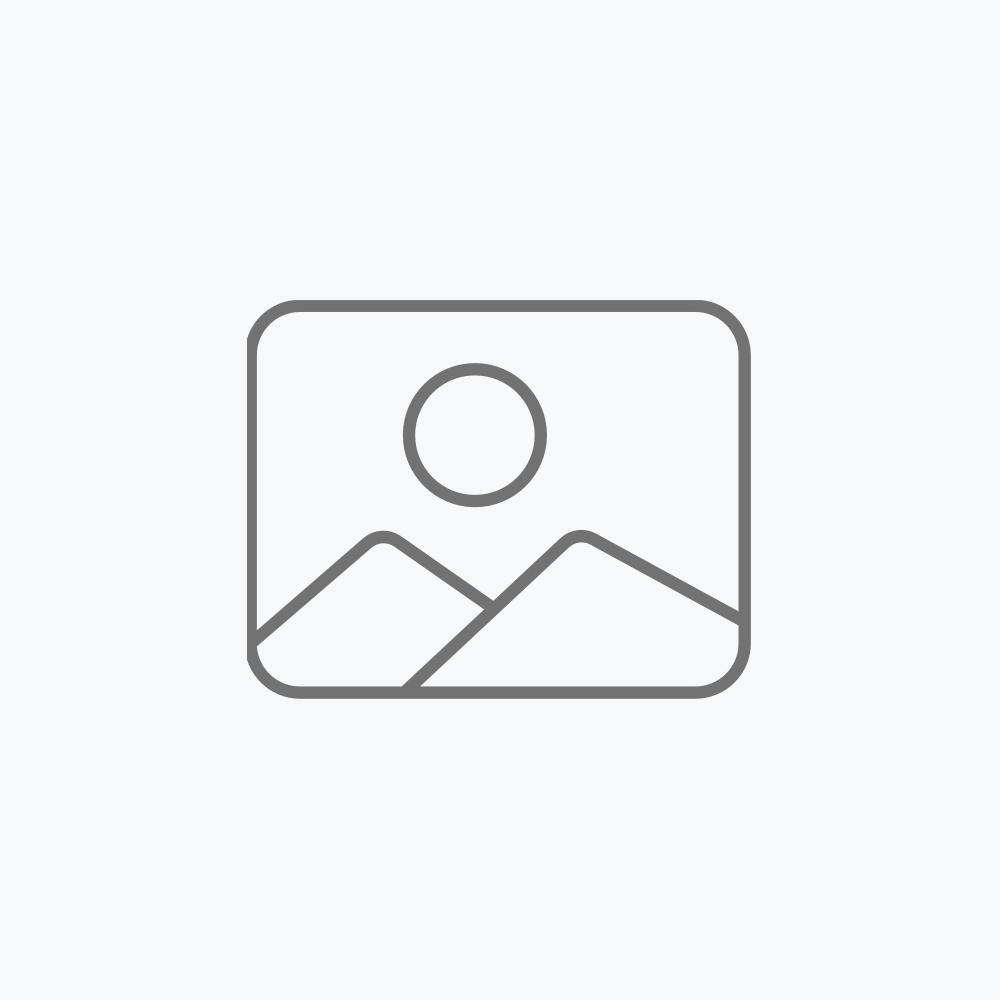 Reloj digital con alarma y termómetro